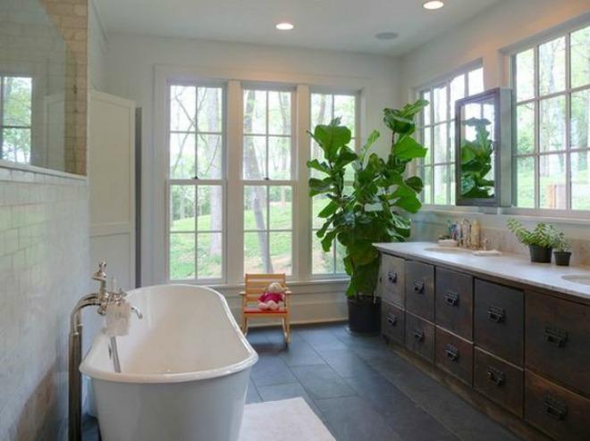 Kết quả hình ảnh cho cây cảnh phòng tắm