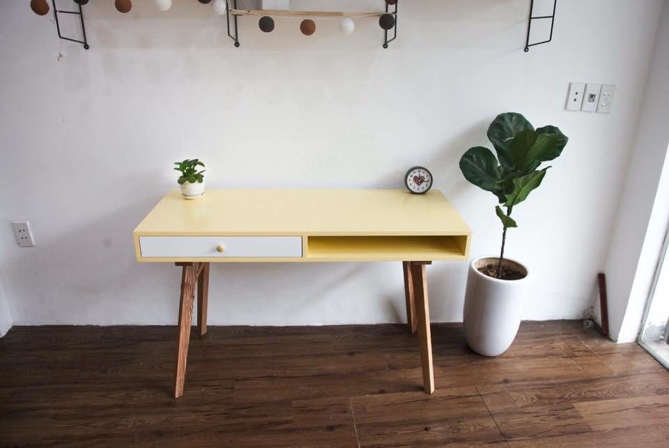 bàng singapore trồng cạnh bàn làm việc